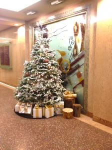 Greenscape Design Live Evergreen Christmas Tree
