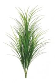 Grass Bush Green