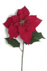 Poinsettia Red -Greenscape