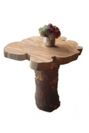 Tree Cookie Cocktail Table