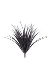 Vanilla Grass Black - Greenscape